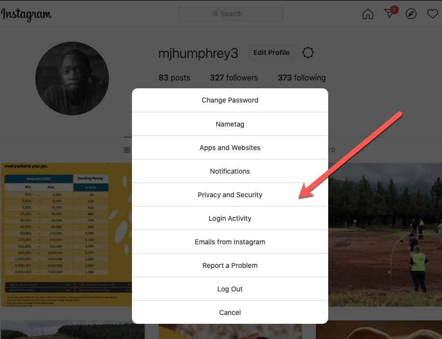 Instagram Privacy and Security Options