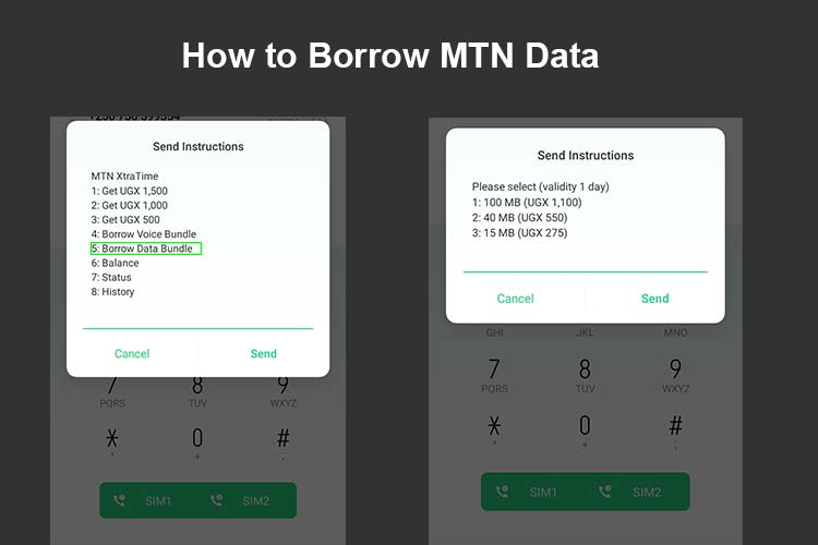 how to borrow mtn data