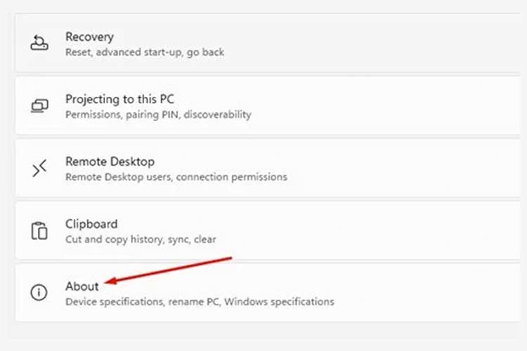 Windows 11 Settings About Section